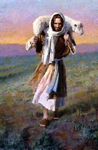 Jesus e a ovelha - 1